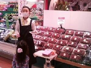 【12/8池袋】日払い&日給1万 トマトの試食販売 イメージ1